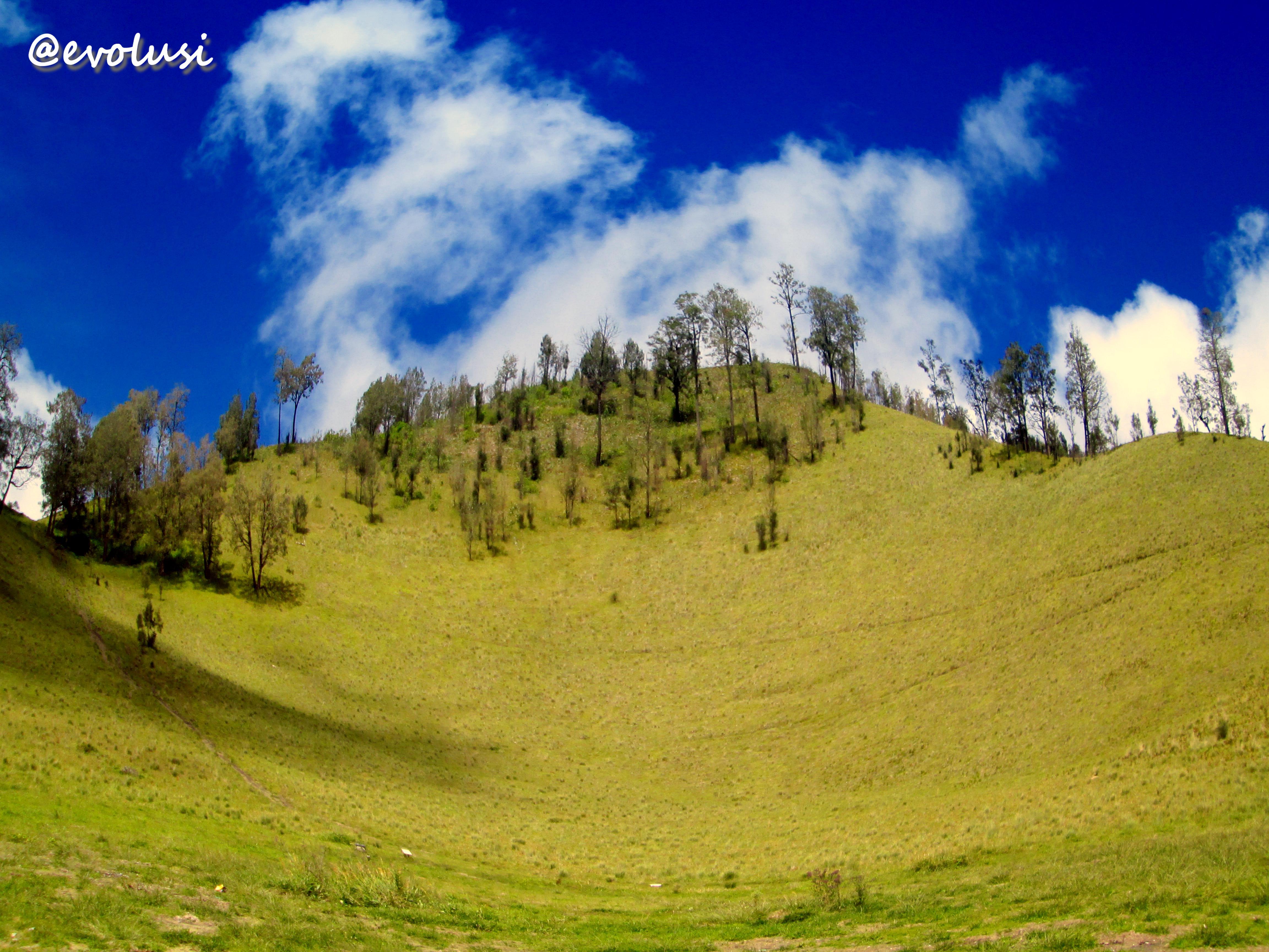 Gunung Semeru Keindahan Sejarah Legenda Dan Cerita E Note